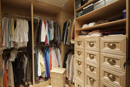 Tidy : Walk in closet with organized clothing