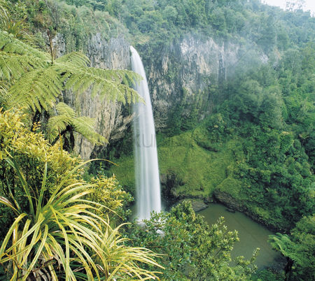 Physical : Waterfall in rainforest elevated view