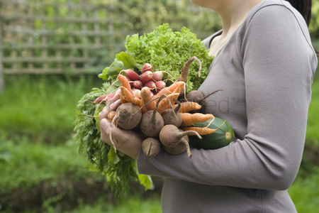 Garden : Woman holding vegetables in garden mid section side view