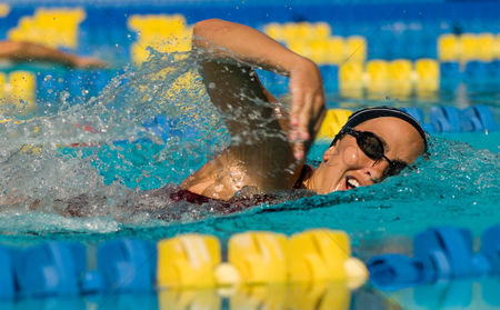 Swimmer : Woman swimming in pool  close-up